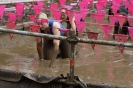 Muddy Angel Run 2017_273